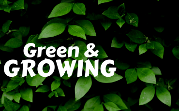 Green and Growing